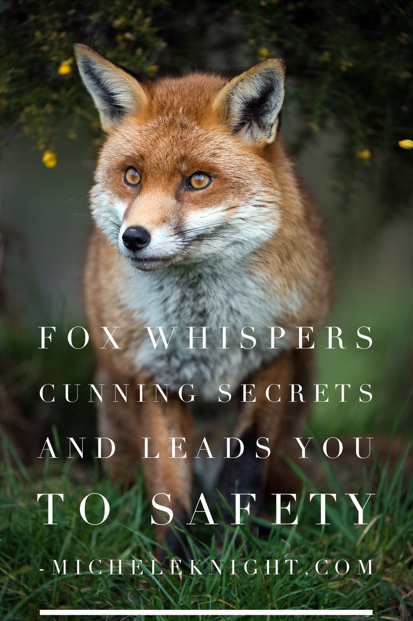 fox animal spirit guide