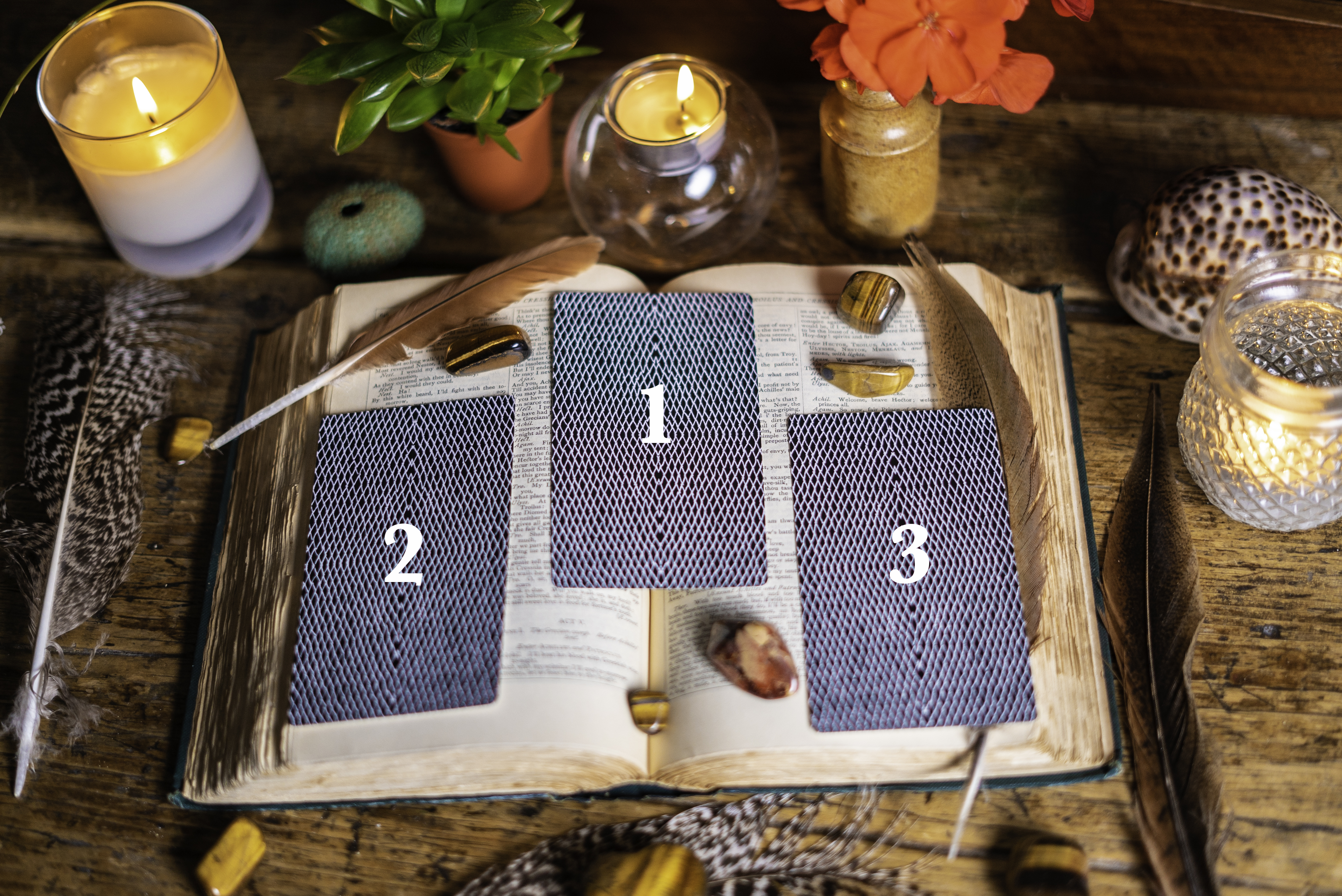 Tarot Reading - Guidance from your soul - michele knight