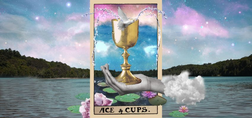 Your Free Tarot Reading - Advice for the next step - Michele