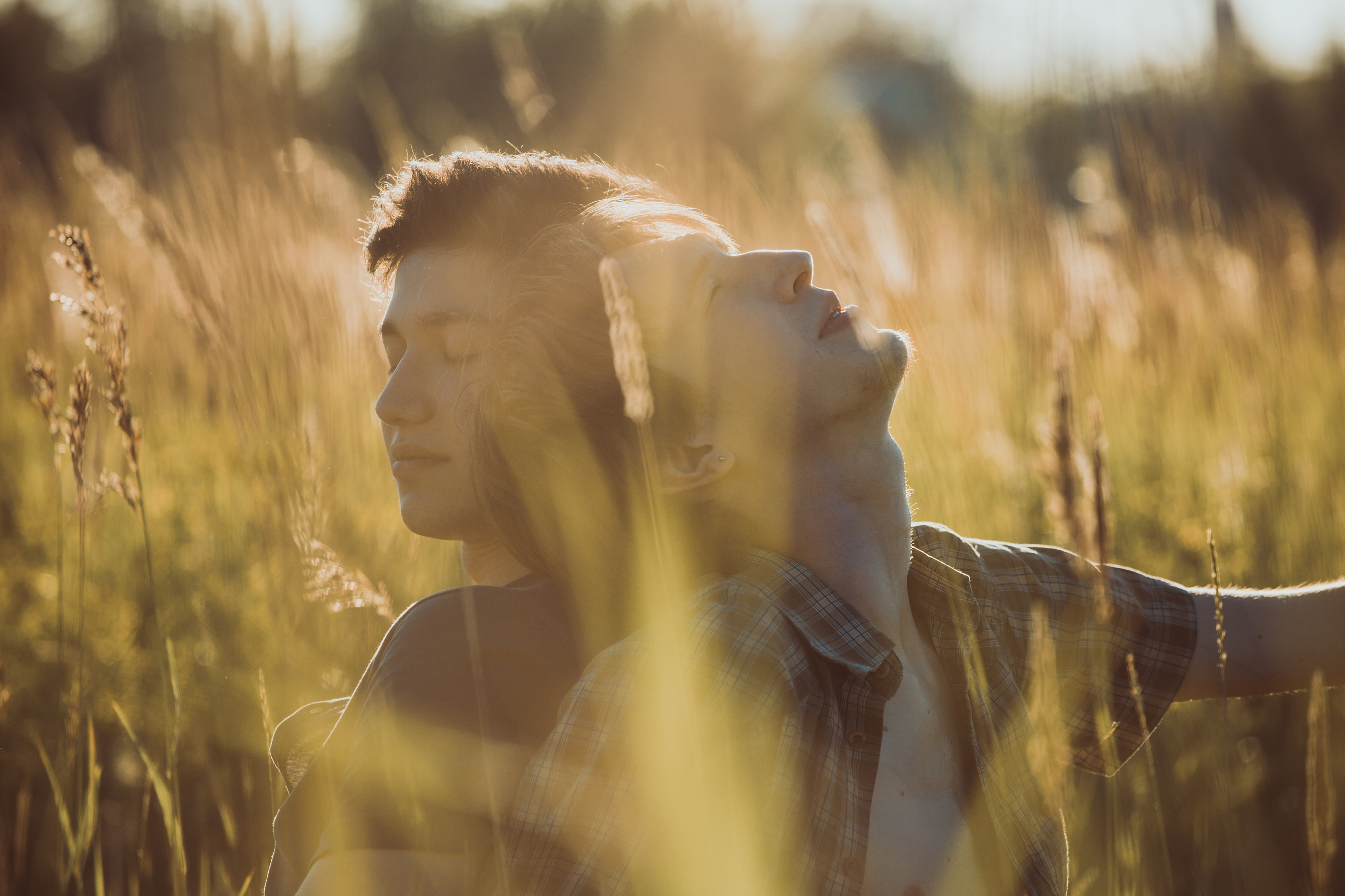 The 7 Secret Signs to Soulmate Success - Michele Knight