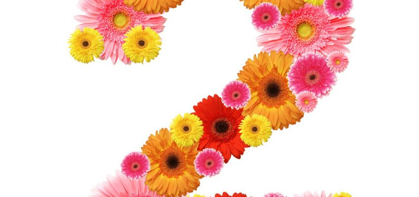 Numerology: Secrets of your Birthday - 2nd, 11th, 20th, 29th: Number