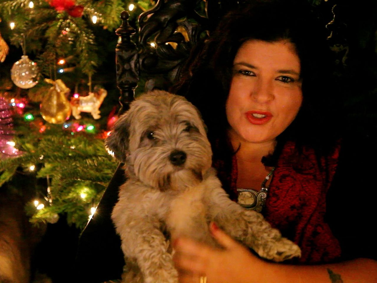 Xmas psychic and astrology reading