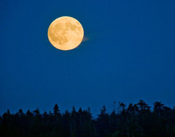 Full Moon in Virgo Video - Michele Knight