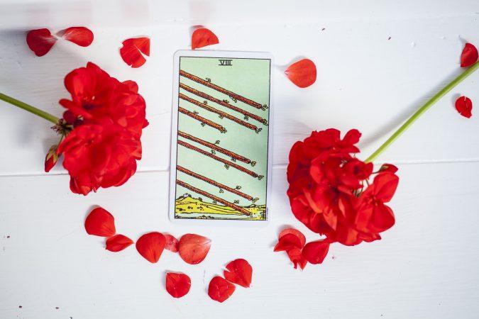 tarot card 8 of wands